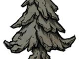 Окаменелое дерево