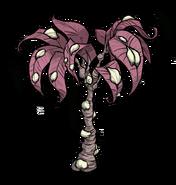 Cocooned Tree Beta