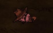 Вольфгаг спит