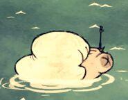 Белый кит вздулся