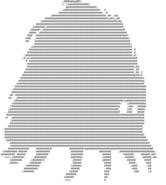 Crawling Horror ASCII2