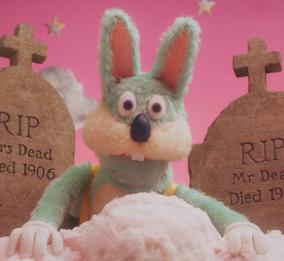 RabbitDHMIS3.png