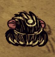 Śpiący ślizgacz