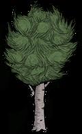 Drzewo liściaste (RoG).png