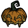 Fashion Pumpkin