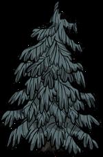 Guzowate drzewo.png