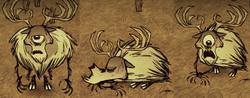 Deerclops Shot by Sleep Dart