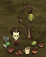 Drzewo kakao w grze