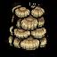 Muszelkowa zbroja (DSS)