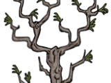 Drzewo gałązkowe (DST)