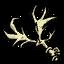 Róg jelenia (DST)