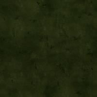 Tekstura darni leśnej