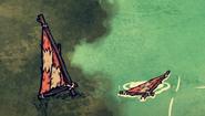 Wężoskorzy żagiel w grze (DSS)