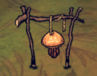 Meduza na suszarni (DSS)