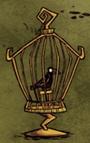 Kruk w klatce na ptaki
