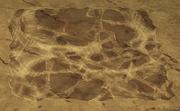 Ziemia pokryta klejącą pajęczyną.png