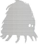 CRAWLING HORROR ASCII 2