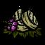 Kwitnąca bulwa (DSH)