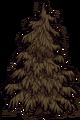 Adult Lumpy evergreen.png