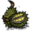 Durians.png