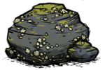 Limpet Rock.png