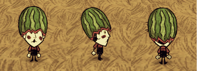 Fashion Melon Wes.png