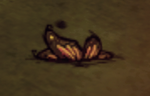 Butterfly Wings on ground.png