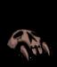 Woven Shadow