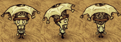 Eyebrella Warly.png