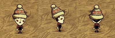 Winter Hat Wes.png