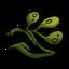 Seaweed Stalk.png