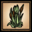 ReedsIcon.png