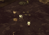 Rot Trap 2.png