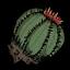 Dug Cactus.png