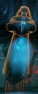 Holo-Seraphim
