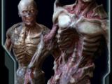 Codex/Demons