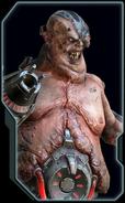 Carcass Codex