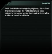 Soldier Codex Entry