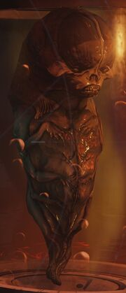Fetus2016.jpg