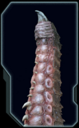 Tentacle Codex
