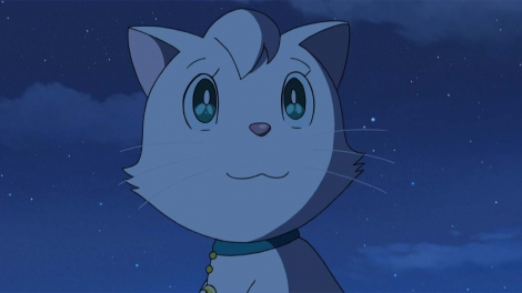 Luna (cat)