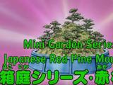 Mini Garden Series