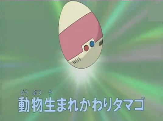 Animal Transformation Egg