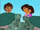 Diego and Dora Save the Giant Tortoises