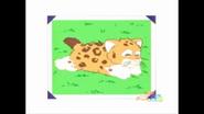 Newborn Baby Jaguar