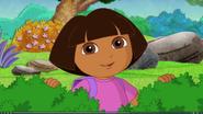 Dora 423243