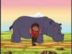 Diego Reunites Hippo and Oxpecker