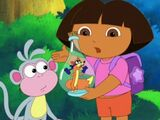 Dora's Dance to the Rescue