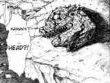 Kaiman's Severed Head