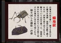 Arijigoku design